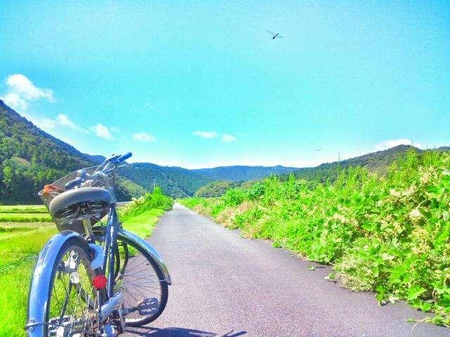 美瑛の景色と自転車