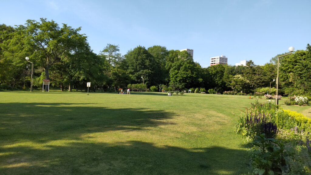 中島公園の芝生広場