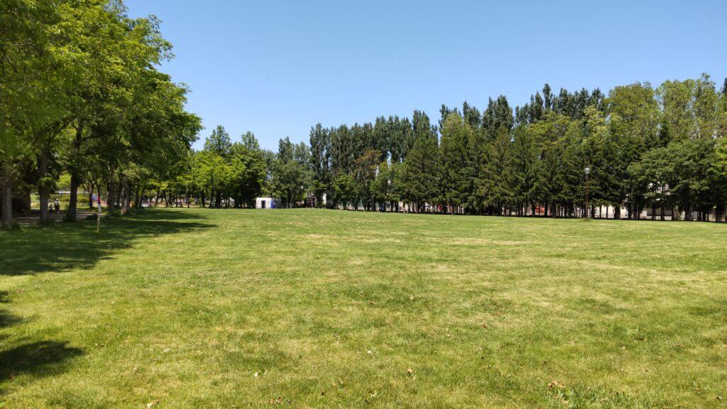 手稲稲積公園の芝生広場