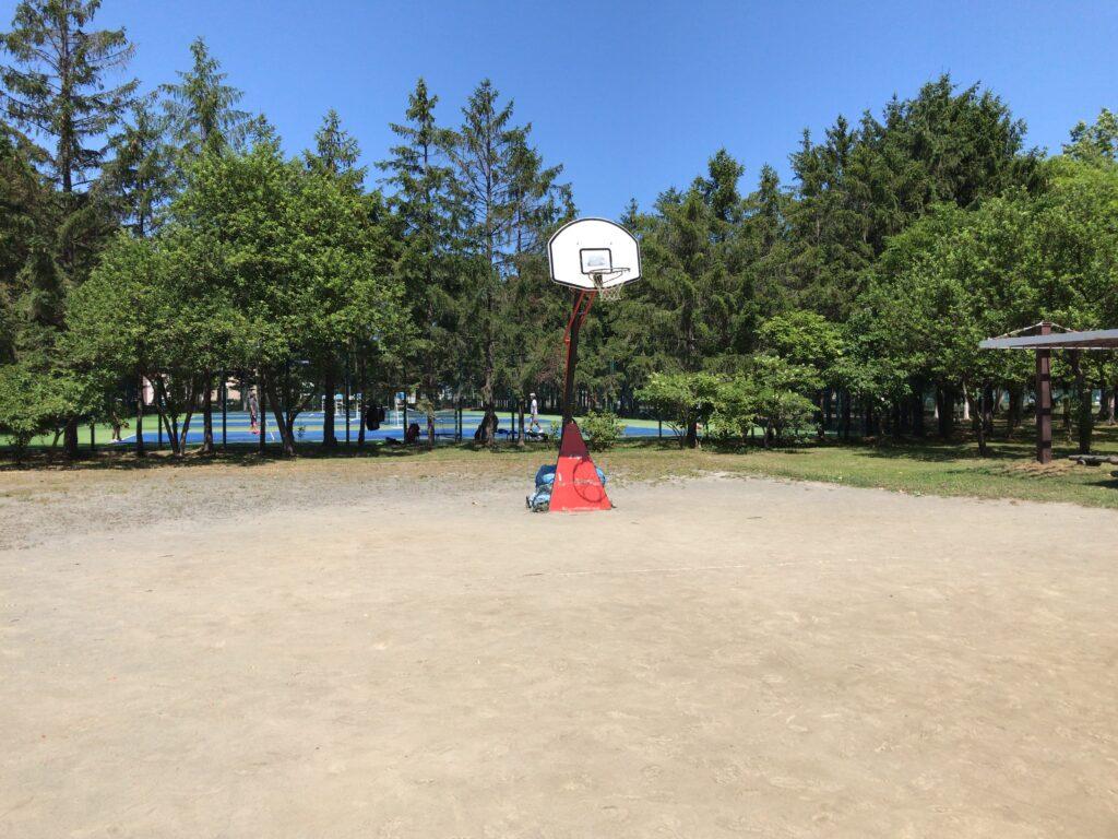 手稲稲積公園のバスケットゴール