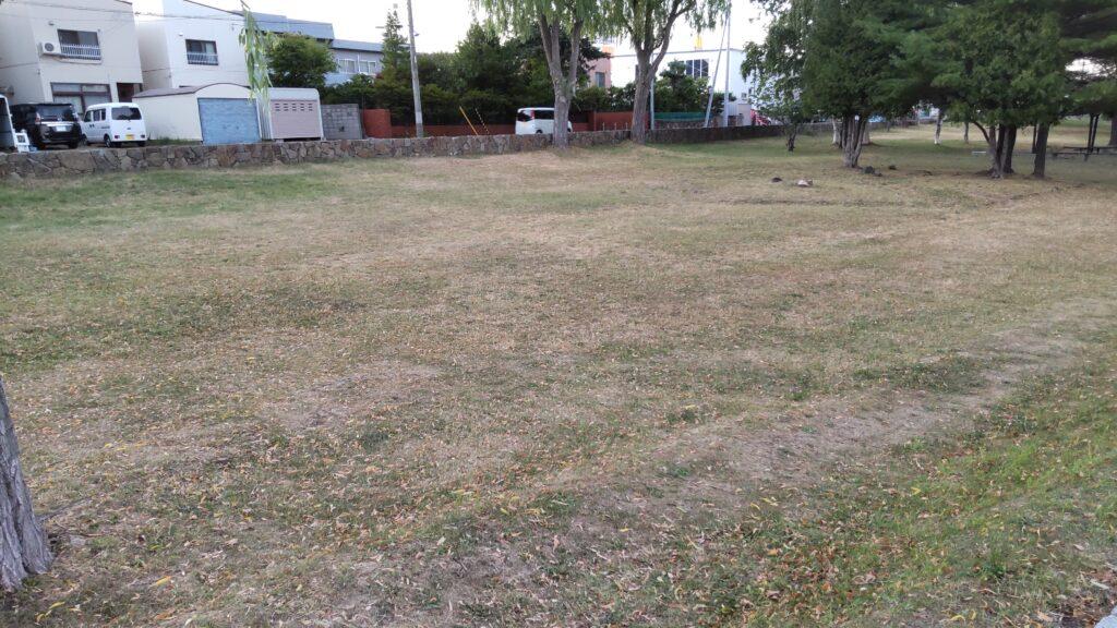 発寒河畔公園の芝の広場
