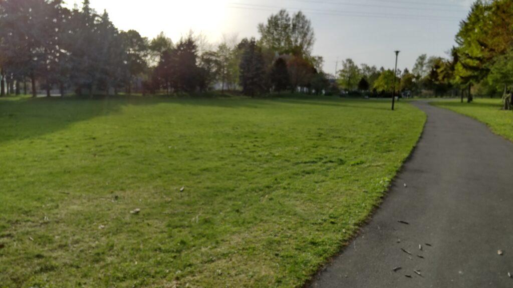 発寒西陵公園の芝の広場